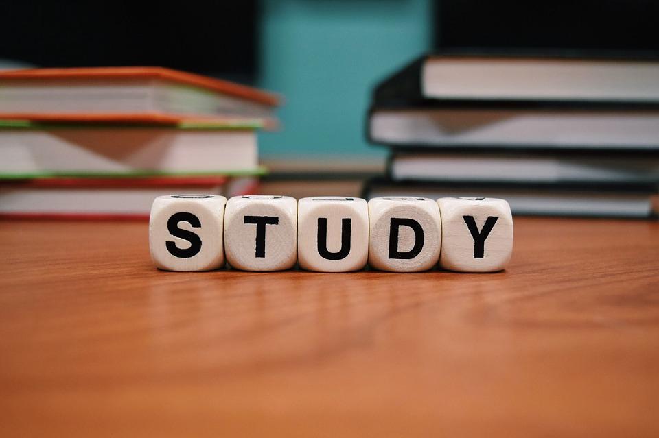 【第二の人生】人生の意義「勉強をする本当の目的は何?」